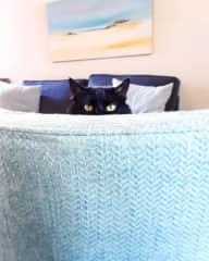 Peek-A-Boo with Mia