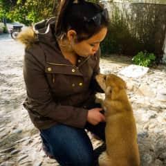 Friendliest pup you'll ever meet in Granada, Spain <3