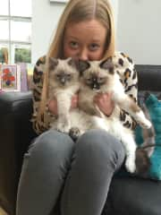 Rebecca - looking after my aunty's lovely kittens