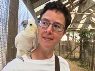 Me and a bird friend at an animal sanctuary in Cape Town (refused to leave my shoulder!)