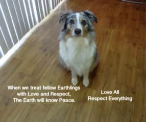 """"""" Love All.  Respect Everything."""""""