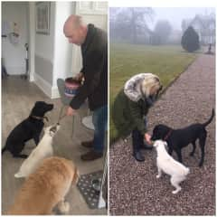 Treat time for Molly, Poppy & Bella