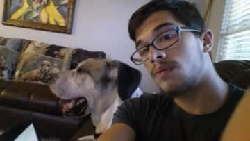 Picasso and I