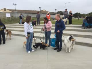 Paul with Callie at Napa Humane Walk for the Animals