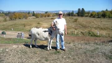 My little buddy, Boaz, in Montana, 2016