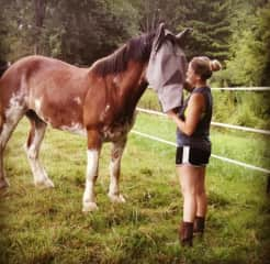 I also take care of other animals such as horses/cats/cattle/goats/snakes/and many more!