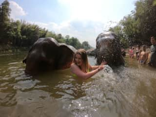 Swimming with elephants! :)