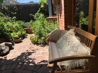 Backyard bench to enjoy the garden.