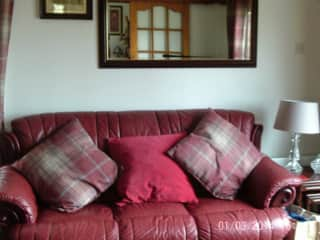 dogs settee lounge