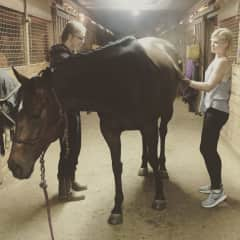 My sister Emma and me grooming Annie, Emma's horse