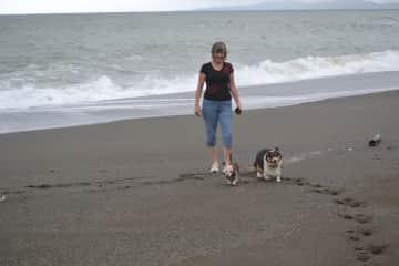 Julie, Hans, and Monty enjoying a walk on the beach!