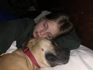 Josephine and Luna sound asleep. December '20