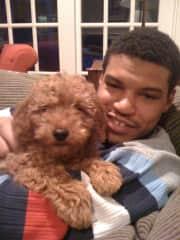 Yogi (as a puppy)