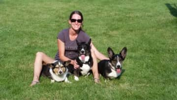Jett, Ace and Teddy, my host mom's dogs in the USA in 2015