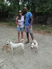 Enjoying a nice walk in Thailand. Volunteering at Rescue Paws