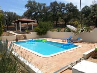 The pool and sun lounge area