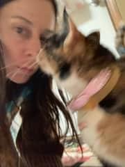 Boca the cat, Trustedhousesitters