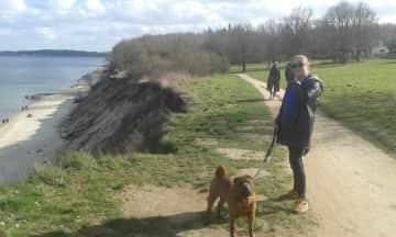Buddha, my Kiel dog. This beautiful spot is close to where I live