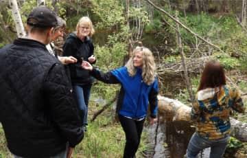 teaching wild plant identification and medicine making