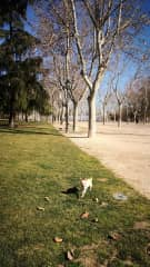 San Isidro park. 1 minute away