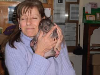 Linda and baby Wombat 2015