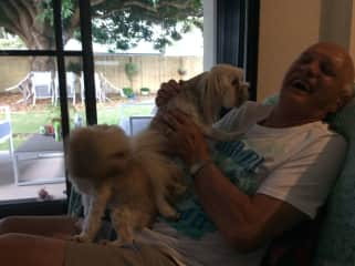 Ken having a good laugh with 2 adorable dogs we looked after.
