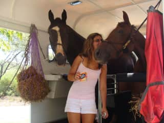 travelling with horses - Calm and Happy