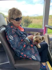 Cookie enjoyed her bus trip :)