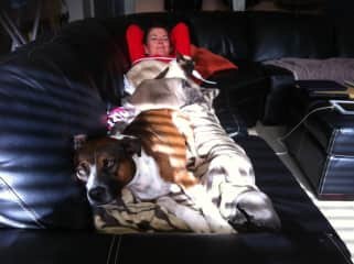 My pets taking care of me when I wasn't well with flu. <3