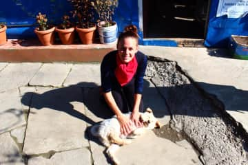 That was in Nepal too. I love to do good things for all animals. (2020)