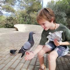 Robin, always attracting wildlife, Barcelona 2021