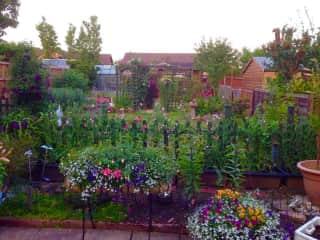 The garden in our previous home