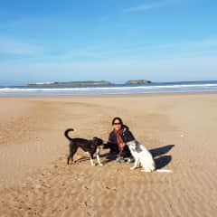 On the beach in Morocco with Daisy and Dottie.