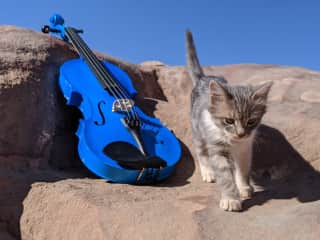 My fovourite picture made by me - Petra with kitty and my blue violin