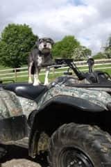 Dylan on Quad