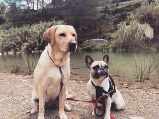 Salka & Stella