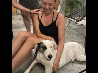 Hard goodbye to Dalma, the dog we took care of during one month in Tulum