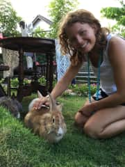 Sarah Moe and some very sweet rabbits