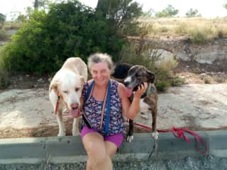 sue with 2 of our foster dogs in spain before there journey to there forever homes in the UK