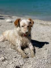 At the beach, digging for treasure!
