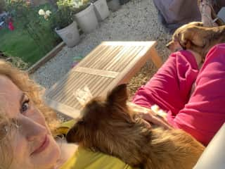 First dogsit with TrustedHousesitters in Brighton - it went very well!