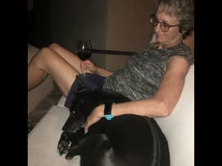 Relaxing with Beau in Tucson, AZ