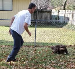 Kyle playing chase with Reggie.