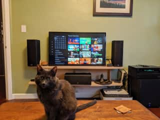 Oscar gives a lesson about the Roku-based entertainment center
