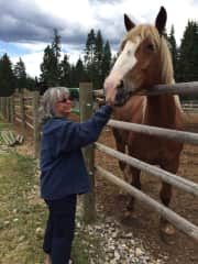 Me finding horses in Montana