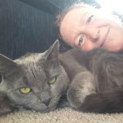Titan, housesit cat 3weeks 05.2019 Australia, Dapto