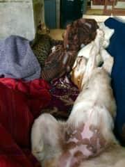 Laura doing siesta