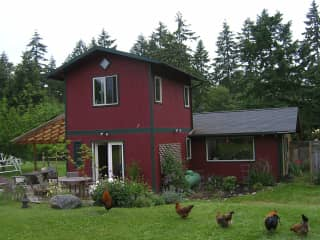 Our house, from the rear--but we don't have the chickens anymore!