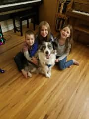 The kids love dogsitting since we get to meet so many friendly pups! We typically watch 2-3 dogs each month. About half the stays are just for the weekend, and the other half are a week or longer.
