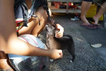 Megumi playing with a local puppy in Bali
